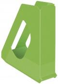 Magain box Esselte Europost Vivida A4 zelený