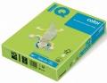 IQ COLOR LG46 A4 160g olivově zelená